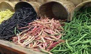 いろんな豆の種類のスペイン語(おいしいレシピつき)