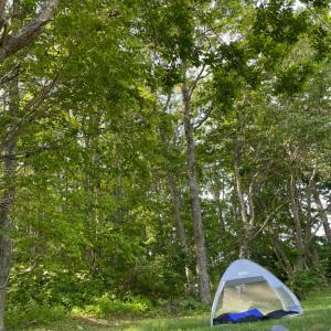 キャンプはデイキャンプの日帰りで♡