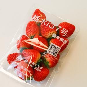 美味しい いちごを発見!『栃木i37号』
