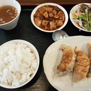 鎮海楼(餃子/目黒)ぷりっとした食感が楽しい個性派海老入り餃子