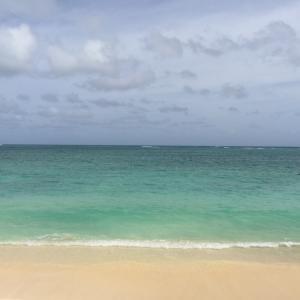 【2018】ハワイ、綺麗な海が見たい