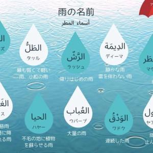 「雨」を表す言葉