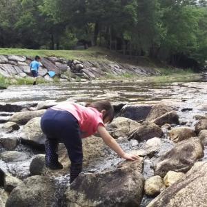 川に行きました。