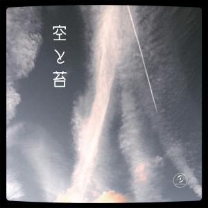 睦月の空と苔。