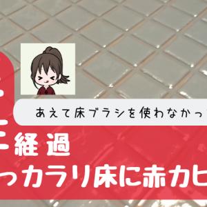 TOTOのほっカラリ床に赤カビ発生!?半年以上、床ブラシを使わなかった結果…【画像あり】