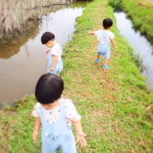 【三つ子の事件】妊娠~産後までに起こった事と気持ち