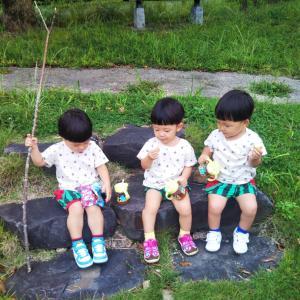 【三つ子と旅行】高知県室戸市へ~!