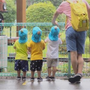 【三つ子と動物園♩】な、なんだお前は!!人間味溢れるマンドリル