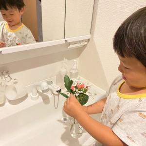 可愛いお花に私、励まされてるー!?!?笑