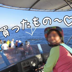 【購入品】夫婦関係改善グッズ・クジラの思い出・男のパンティ