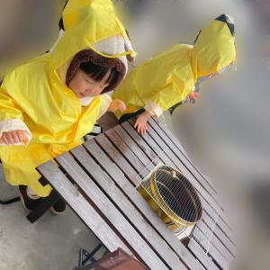 【三つ子と雨の休日1日レポ】前編 & 2時間限定クーポン