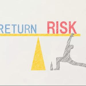 【25ヵ月目】運用実績公開│SPXLリスクコントロール・ポートフォリオ【新型コロナと株式投資】