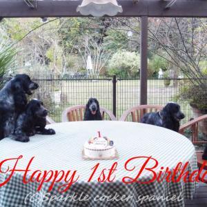 Happy 1st Birthday チビーズ