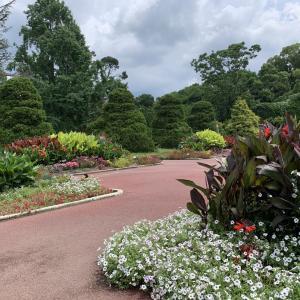 娘の現状と植物園とロイホのランチ!