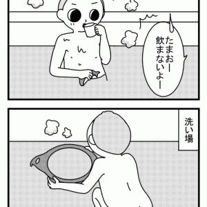 お風呂のお湯を飲む