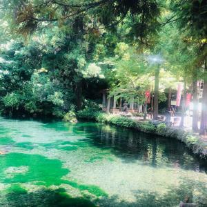 栃木県佐野市 出流原弁天池湧水