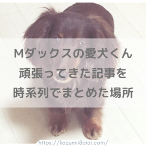 ミニチュアダックス愛犬くんヘルニア含む病気の記事など時系列まとめ