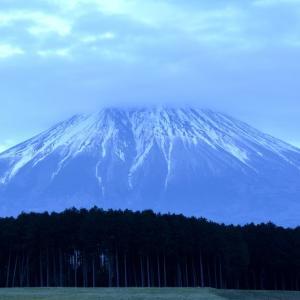 今日は静岡に居ます