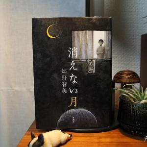 『消えない月』を読んだ。