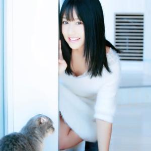 とっても猫が好き!2