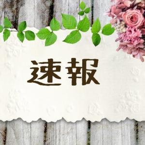 8/4(火)コストコつくば倉庫速報