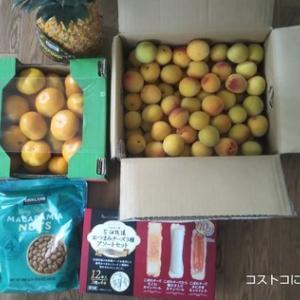 6/17(木)コストコ購入品(千葉ニュータウン)南高梅も販売されてました。