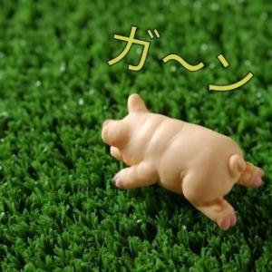 【コストコ2020年下半期】(7月~12月)私の残念賞商品