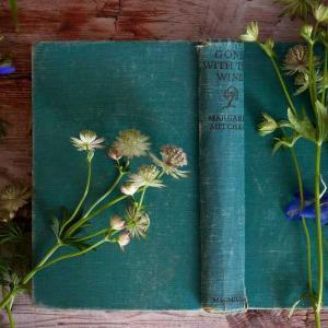 【2巻までネタバレあり】虫かぶり姫|ネタバレなしの感想も