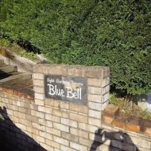泉ヶ岳の麓にある喫茶店 Blue Bell(ブルーベル)を訪ねたが