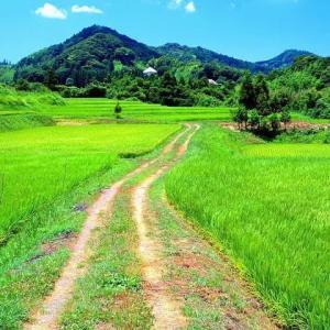 疲れた時に田舎の風景で画像検索してはいけない ※田舎画像大量注意