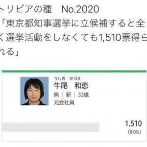 都知事選で牛尾和恵という女性が出馬代300万円かけて凄いトリビアを残す