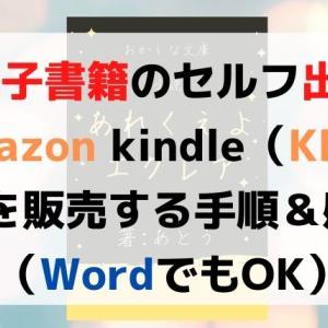 【個人出版する方法】電子書籍をAmazon「KDP」で0円販売(感想)