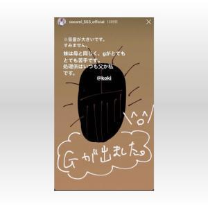 【芸能】Koki,父キムタクは「すごいS…ゴキブリ捕まえて追っかけてくる」 Cocomiも証言「イジメっ子」