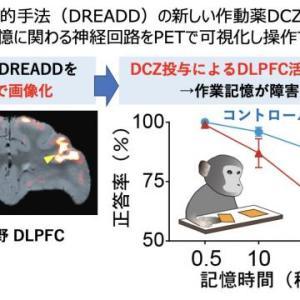 【研究】脳のスイッチをオフにして「記憶を削除する薬」が開発される