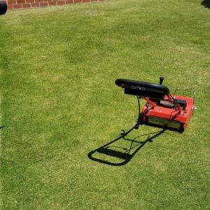芝刈り(3回目)