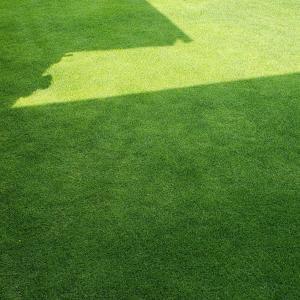 芝刈り(9回目)