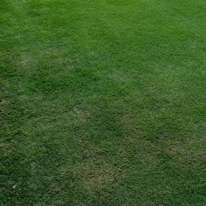 芝刈り(20~24回目)