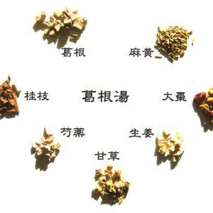 漢方(中医)へのト・ビ・ラ『漢方石けんへの想い』瘀血タイプについて