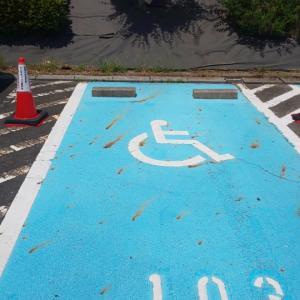 梅雨に負けそうなぶひと身障者スペース