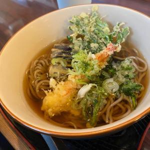 久々の外ご飯☆天ぷら蕎麦と、カキフライ定食♡
