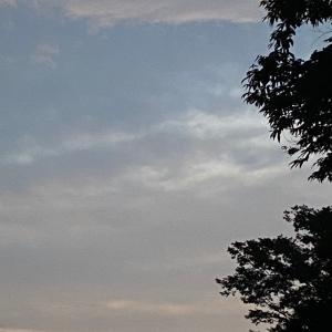 早寝早起きと、東の空