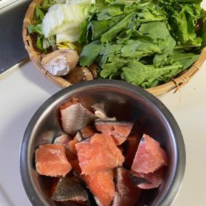 今日は、鍋です〜タラ菊と、鶏と、秋鮭♡
