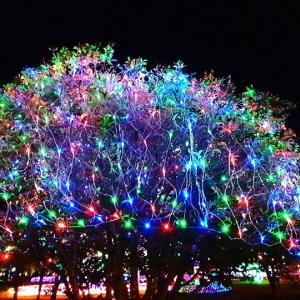 慶州☆光のオブジェ