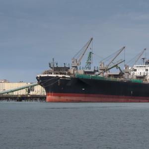 【オーストラリアの新型コロナウィルス】日本からオーストラリアへの船便が届きました!