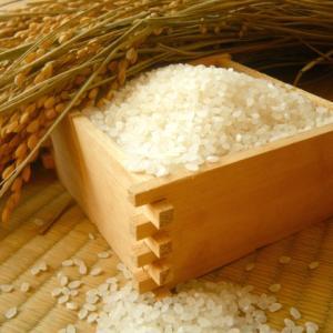 やっとSunriceのコシヒカリのお米が買えました!でも…