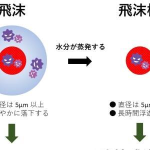 飛沫感染と空気感染(飛沫核感染)の違いについて