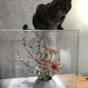 れもんと生け花