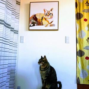 猫と、猫。