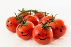 スギ花粉症の方はトマトに注意!!?