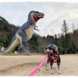 恐竜公園散歩♪ ふり返り投稿(2020.12.27)